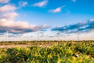 Rapport Ademe Énergies renouvelables