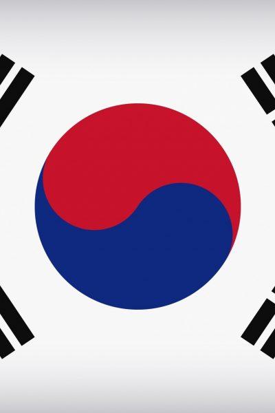 Coree du Sud robot deconfinement