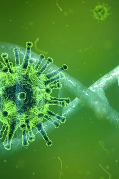 coronavirus attestation honneur maladie professionnelle