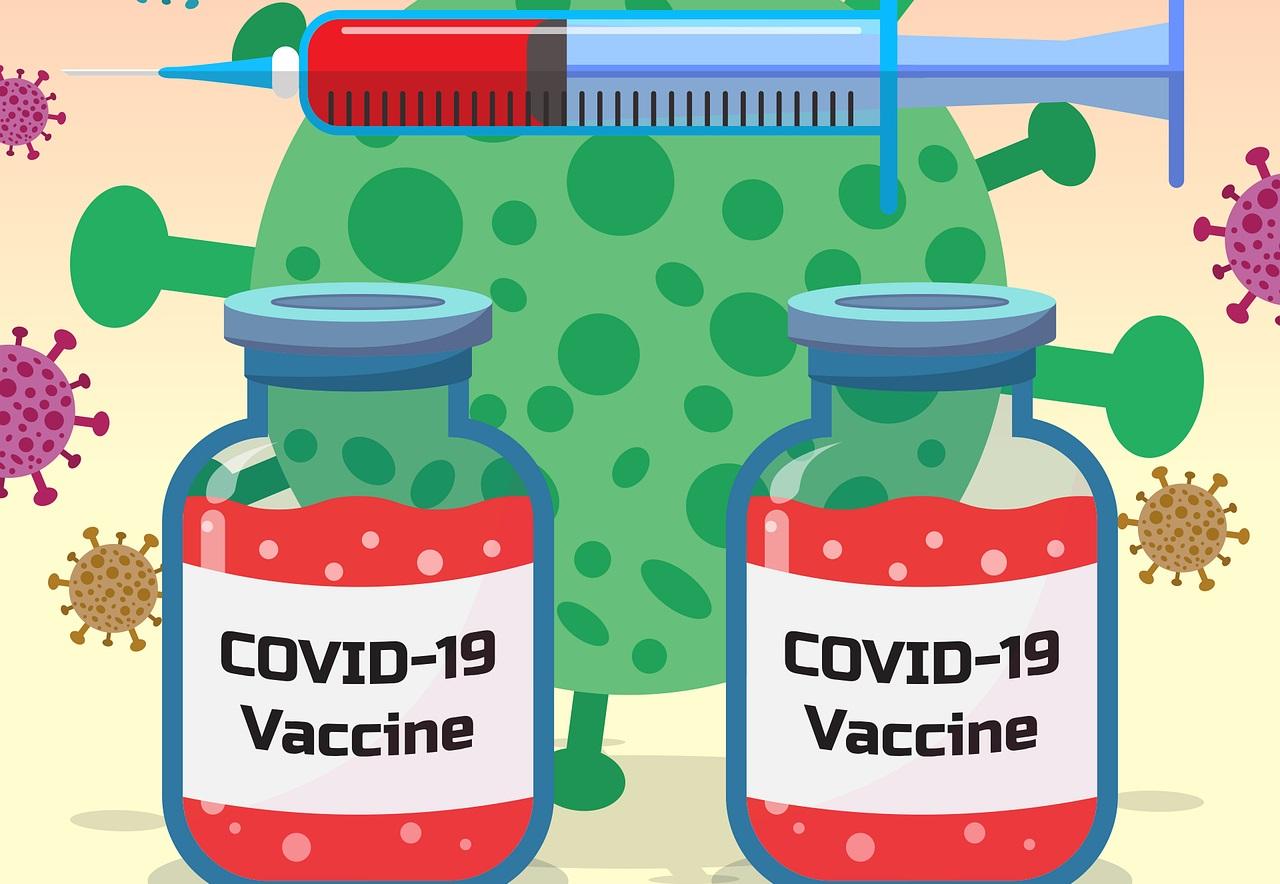 coronavirus immunite