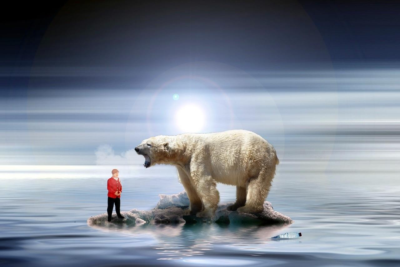 rechauffement climatique mille solutions