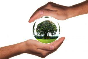 protection environnement deces annee